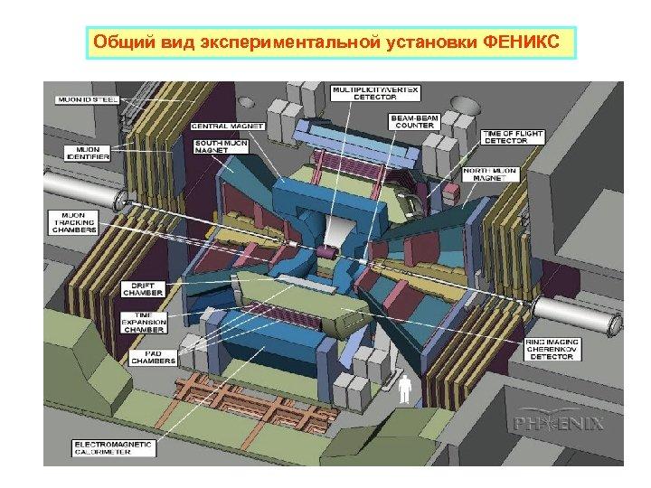 Общий вид экспериментальной установки ФЕНИКС
