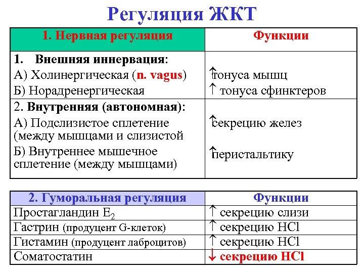 Регуляция ЖКТ 1. Нервная регуляция 1. Внешняя иннервация: А) Холинергическая (n. vagus) Б) Норадренергическая
