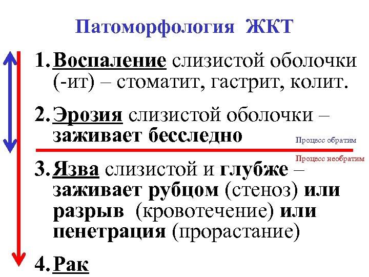 Патоморфология ЖКТ 1. Воспаление слизистой оболочки (-ит) – стоматит, гастрит, колит. 2. Эрозия слизистой