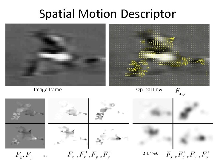 Spatial Motion Descriptor Image frame UC Berkeley Computer Vision Group Optical flow blurred