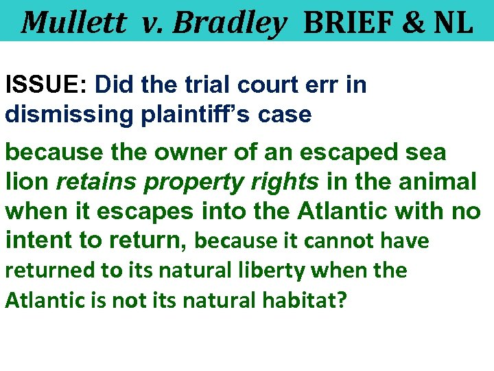 Mullett v. Bradley BRIEF & NL ISSUE: Did the trial court err in dismissing