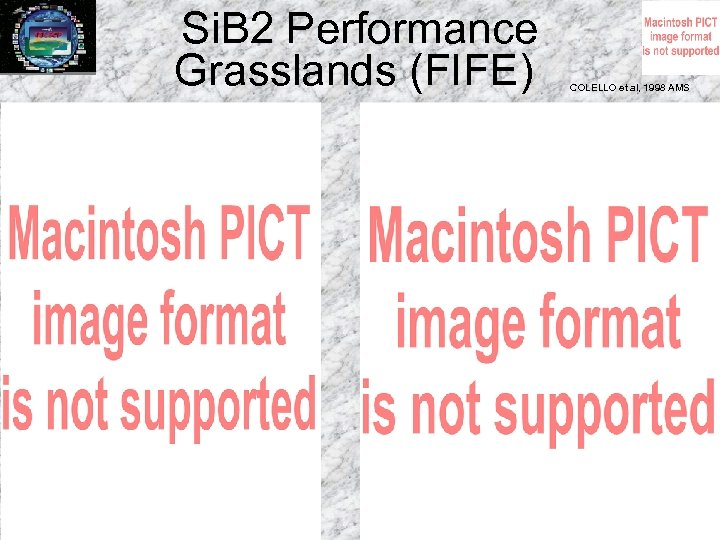 Si. B 2 Performance Grasslands (FIFE) COLELLO et al, 1998 AMS