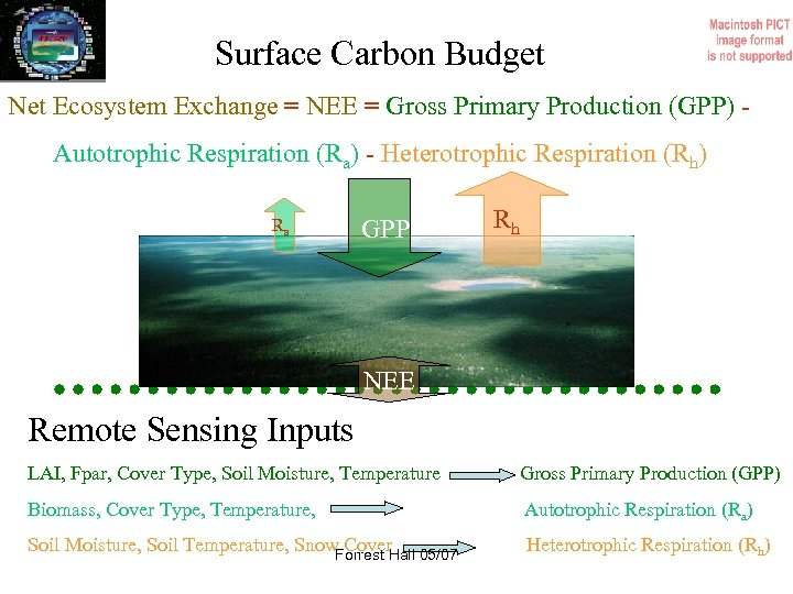 Surface Carbon Budget Net Ecosystem Exchange = NEE = Gross Primary Production (GPP) Autotrophic