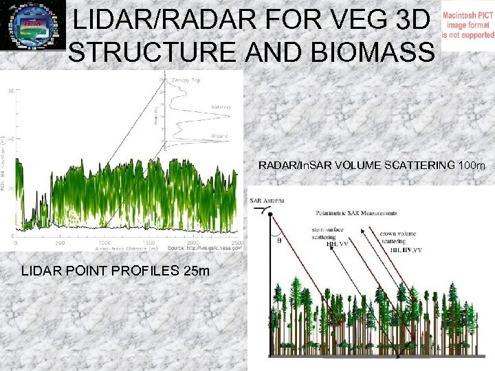 LIDAR/RADAR FOR VEG 3 D STRUCTURE AND BIOMASS RADAR/In. SAR VOLUME SCATTERING 100 m