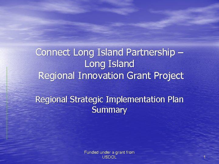 Connect Long Island Partnership – Long Island Regional Innovation Grant Project Regional Strategic Implementation