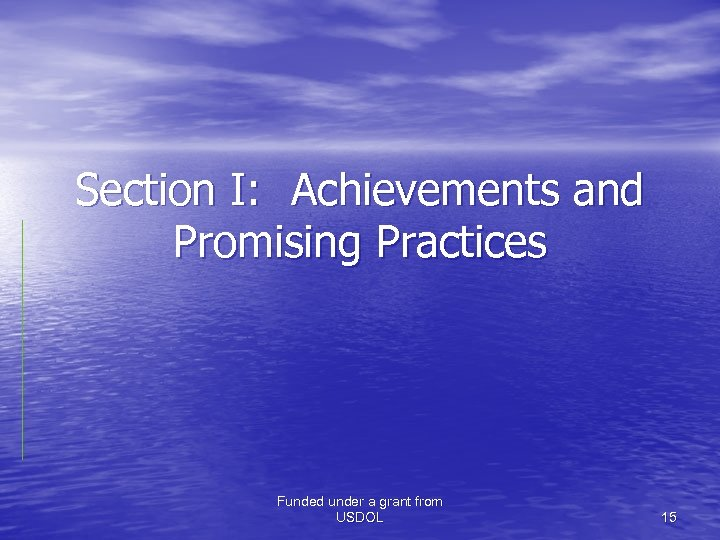 Section I: Achievements and Promising Practices Funded under a grant from USDOL 15