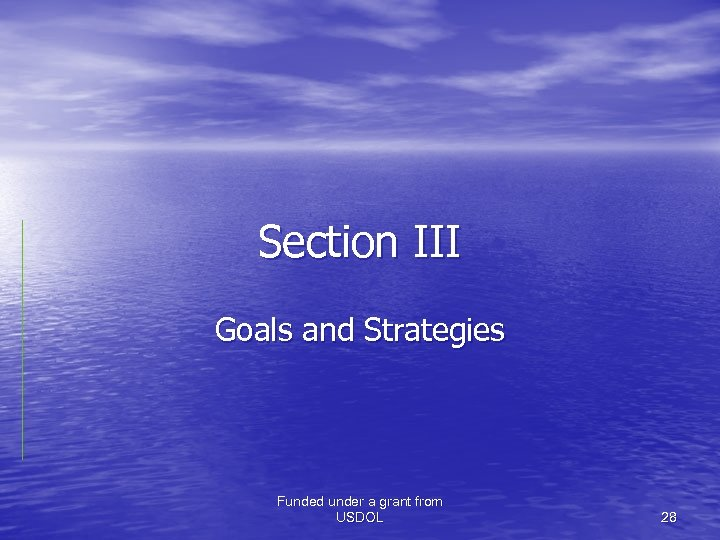 Section III Goals and Strategies Funded under a grant from USDOL 28
