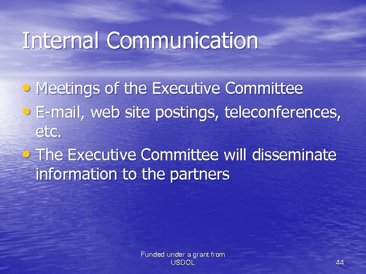 Internal Communication • Meetings of the Executive Committee • E-mail, web site postings, teleconferences,