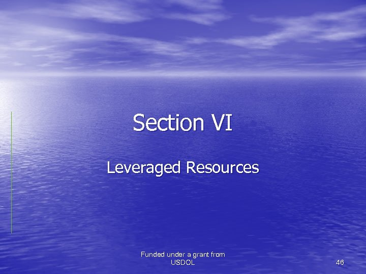 Section VI Leveraged Resources Funded under a grant from USDOL 46