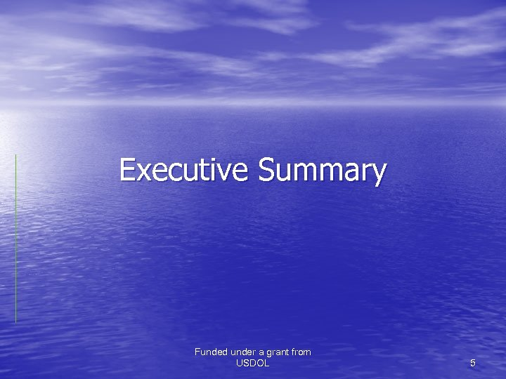 Executive Summary Funded under a grant from USDOL 5