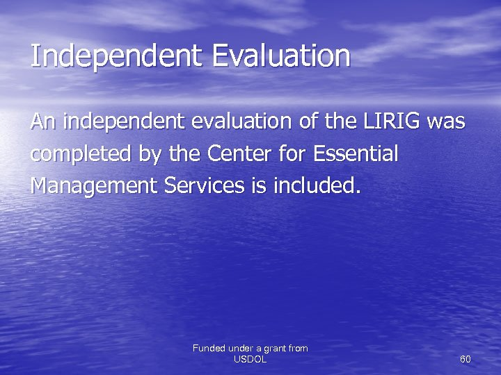 Independent Evaluation An independent evaluation of the LIRIG was completed by the Center for