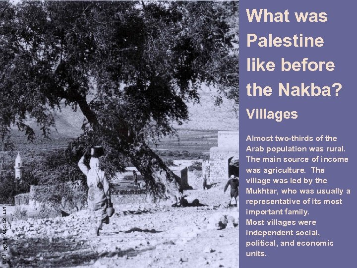 What was Palestine like before the Nakba? Villages חטין, 4391. צלם לא ידוע Almost