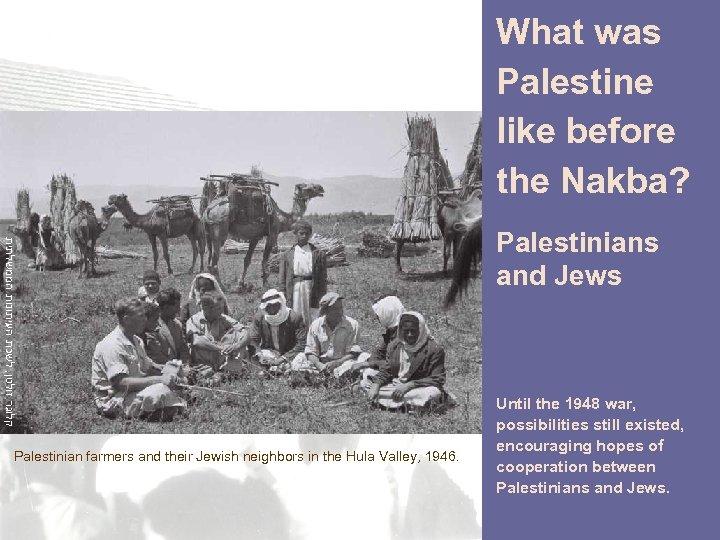 What was Palestine like before the Nakba? קלוגר זולטן, לשכת העיתונות הממשלתית Palestinian farmers