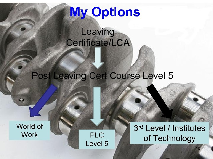 My Options Leaving Certificate/LCA Post Leaving Cert Course Level 5 World of Work PLC