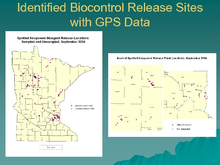 Identified Biocontrol Release Sites with GPS Data