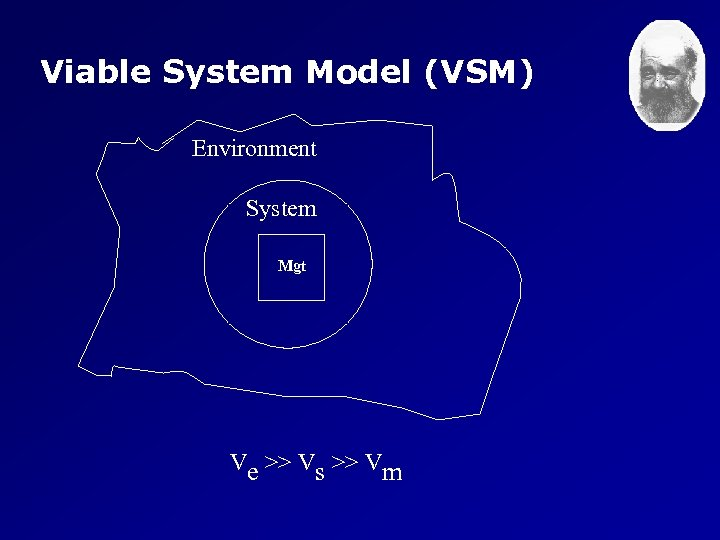Viable System Model (VSM) Environment System Mgt Ve >> Vs >> Vm