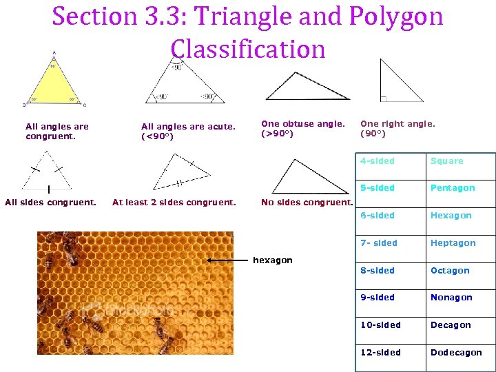 Section 3. 3: Triangle and Polygon Classification All angles are congruent. All angles are