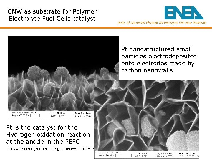 CNW as substrate for Polymer Electrolyte Fuel Cells catalyst Dept. of Advanced Physical Technologies
