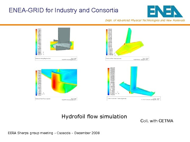 ENEA-GRID for Industry and Consortia Dept. of Advanced Physical Technologies and New Materials Hydrofoil