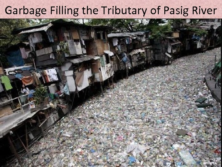 Garbage Filling the Tributary of Pasig River
