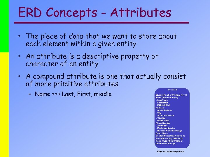 ERD Concepts - Attributes • The piece of data that we want to store