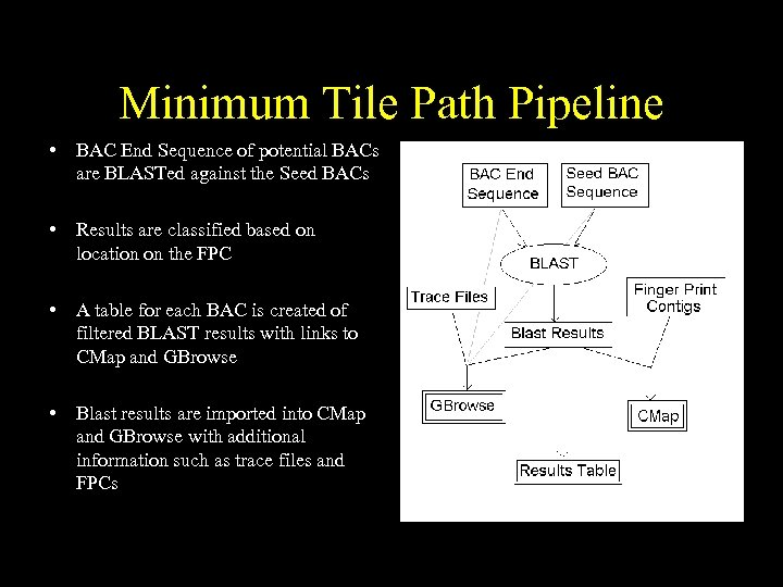 Minimum Tile Path Pipeline • BAC End Sequence of potential BACs are BLASTed against
