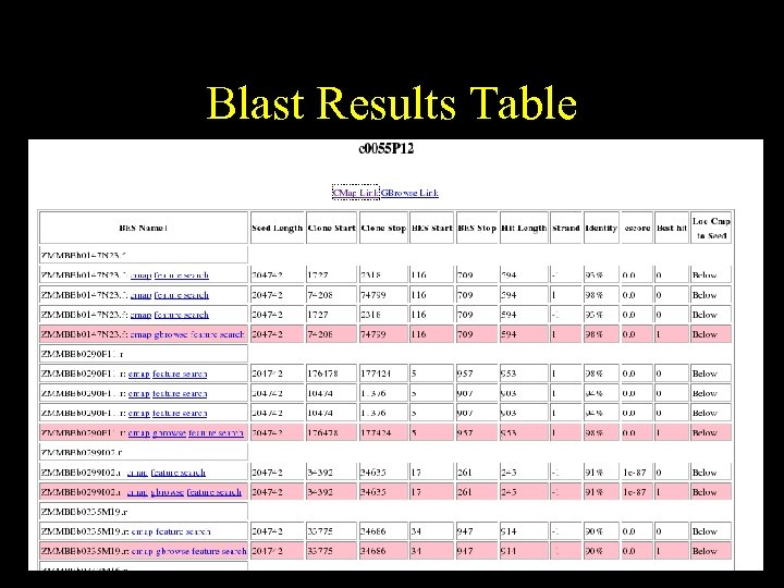 Blast Results Table