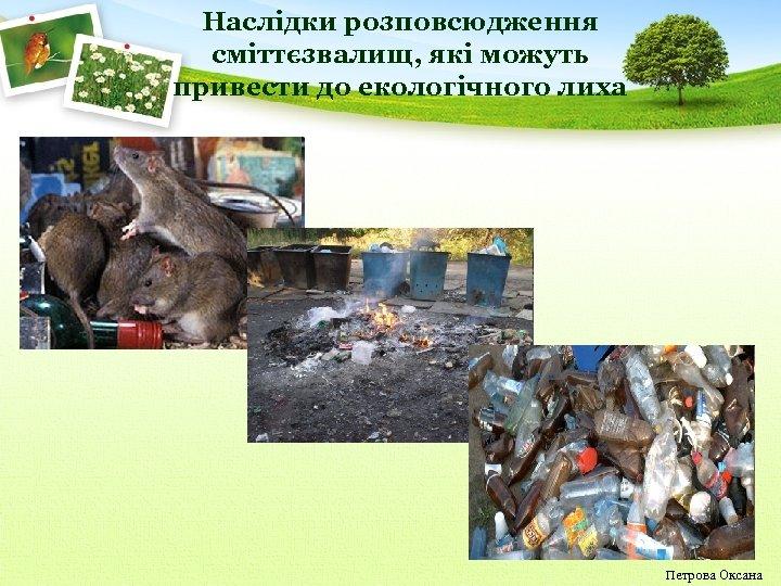 Наслідки розповсюдження сміттєзвалищ, які можуть привести до екологічного лиха Петрова Оксана