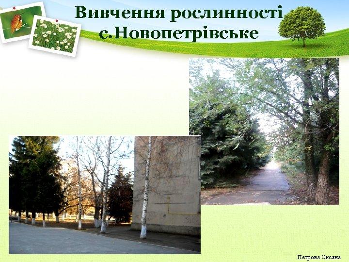 Вивчення рослинності с. Новопетрівське Петрова Оксана