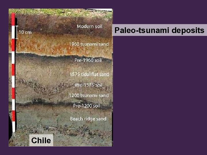 Paleo-tsunami deposits Chile