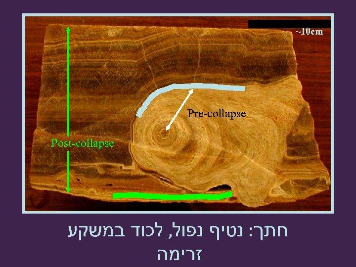~10 cm Pre-collapse Post-collapse חתך: נטיף נפול, לכוד במשקע זרימה