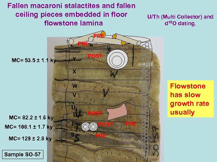 Fallen macaroni stalactites and fallen ceiling pieces embedded in floor flowstone lamina U/Th (Multi