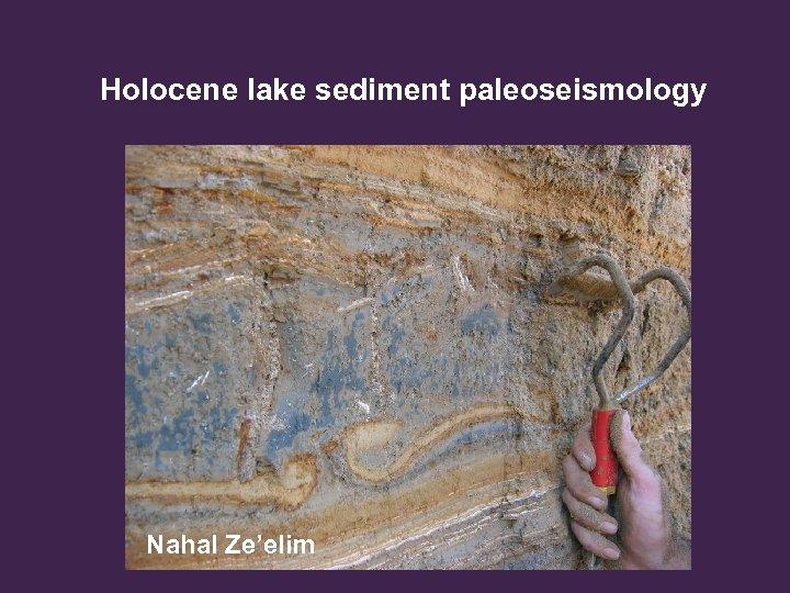 Holocene lake sediment paleoseismology Nahal Ze'elim