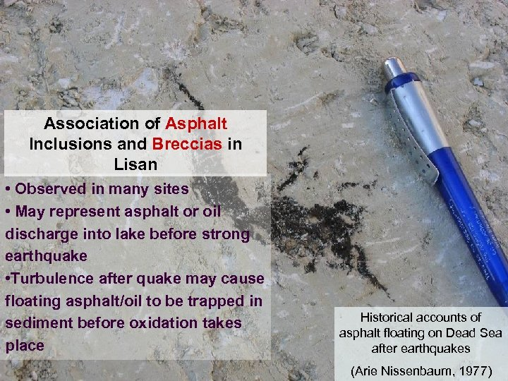 Association of Asphalt Inclusions and Breccias in Lisan • Observed in many sites •