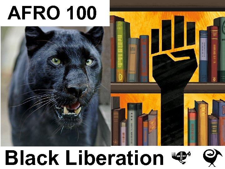 AFRO 100 Black Liberation