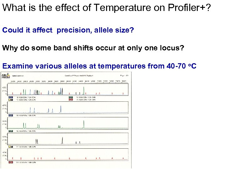 What is the effect of Temperature on Profiler+? Could it affect precision, allele size?