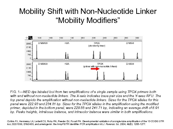 "Mobility Shift with Non-Nucleotide Linker ""Mobility Modifiers"" FIG. 1—NED dye labeled loci from two"