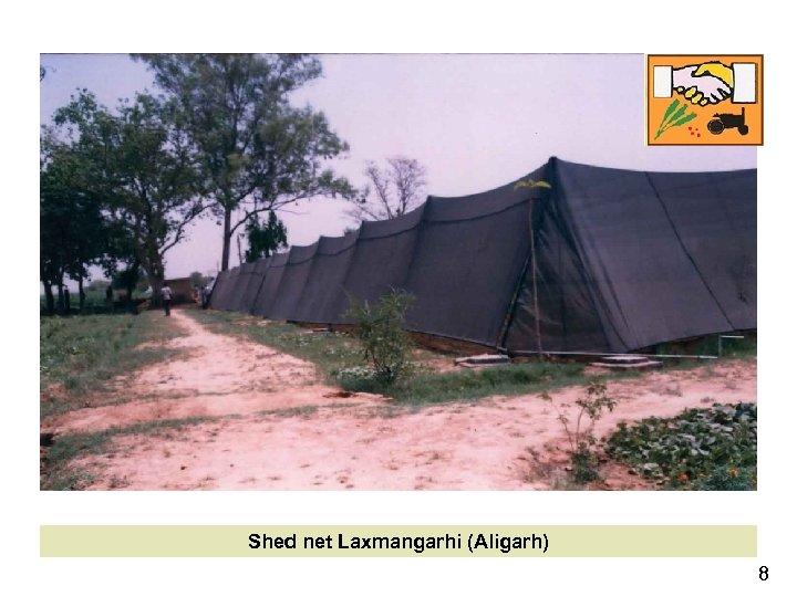Shed net Laxmangarhi (Aligarh) 8