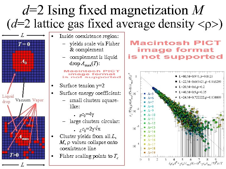 d=2 Ising fixed magnetization M (d=2 lattice gas fixed average density <r>) L •