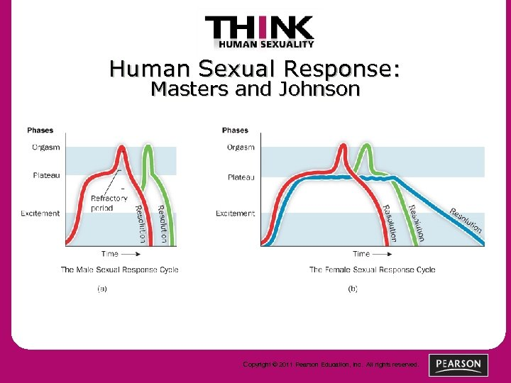 Human Sexual Response: Masters and Johnson Copyright © 2011 Pearson Education, Inc. All rights
