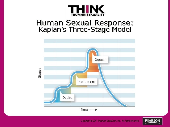 Human Sexual Response: Kaplan's Three-Stage Model Copyright © 2011 Pearson Education, Inc. All rights