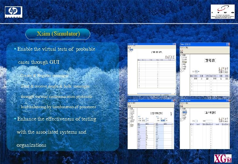 Xsim (Simulator) • Enable the virtual tests of probable cases through GUI - Create