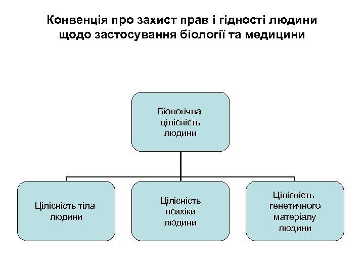 Конвенція про захист прав і гідності людини щодо застосування біології та медицини Біологічна цілісність