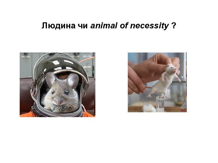 Людина чи animal of necessity ?