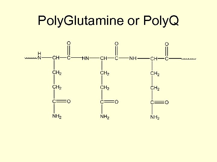 Poly. Glutamine or Poly. Q