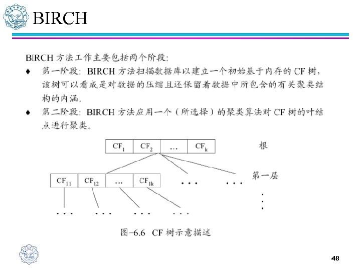 BIRCH 48