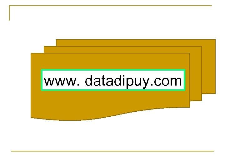 www. datadipuy. com