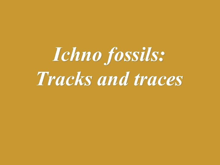 Ichno fossils: Tracks and traces