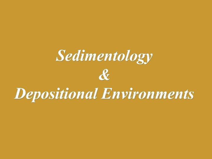 Sedimentology & Depositional Environments