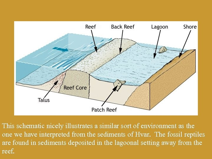 This schematic nicely illustrates a similar sort of environment as the one we have